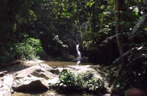 trini-waterfall-1